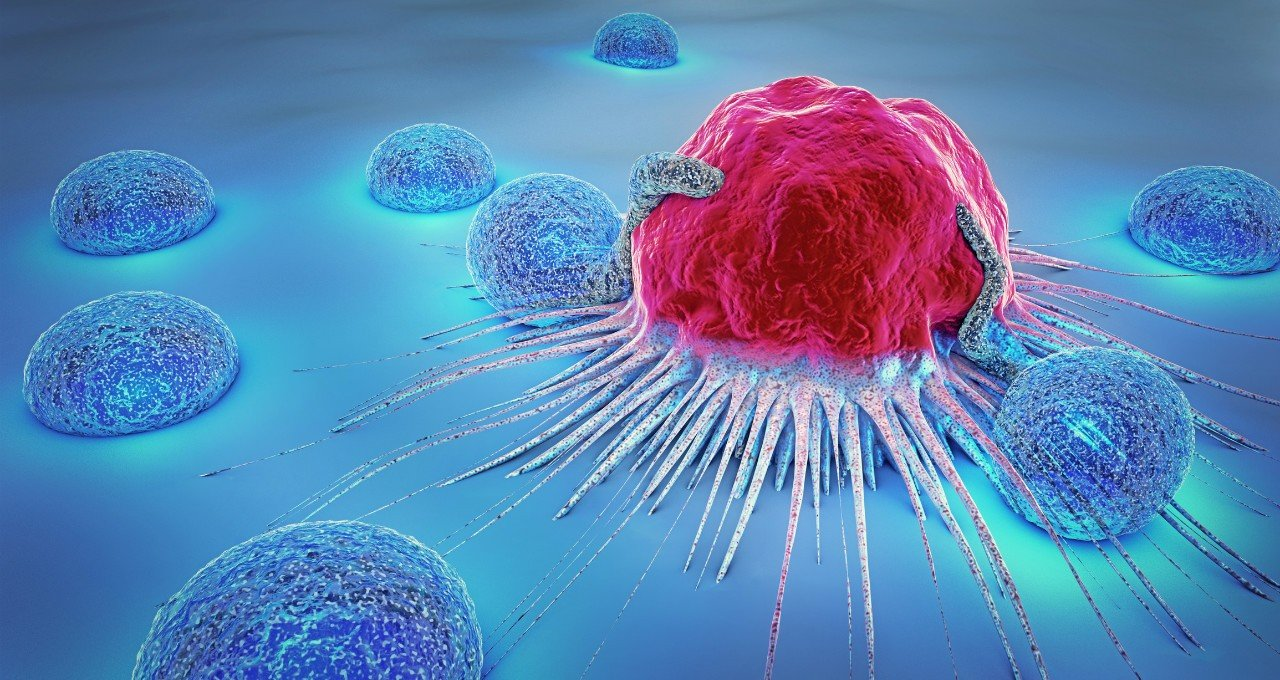 Know The Means And Stages of Combating Her2 Cancer